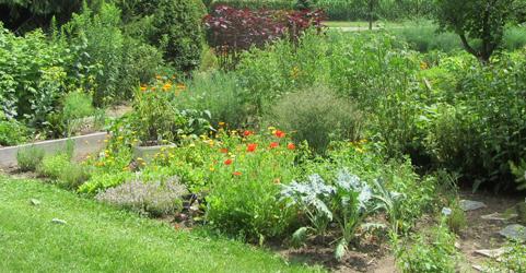 From My Garden, Nancy Abra, Home Made Jams, Jellies, Chutneys, all ...